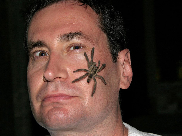 Creepy Spider Tattoo