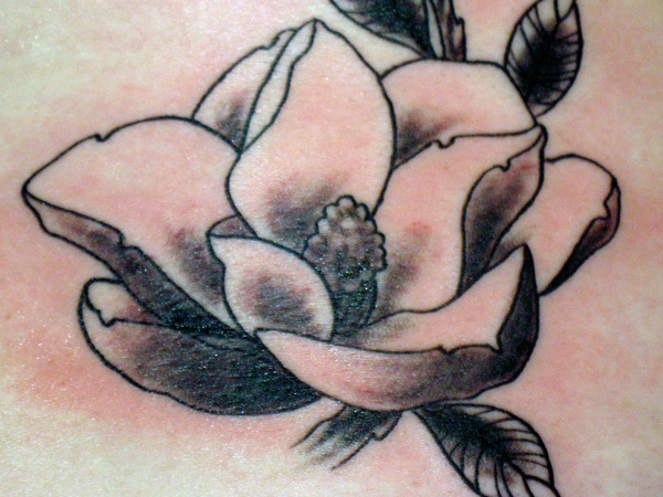 Magnolia Black Design Tattoo