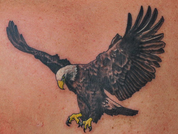 Flying Tattoo