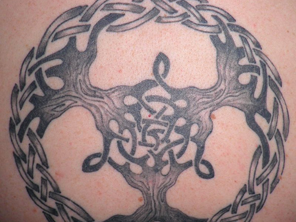 tattooed celtic tree of life 25 Terrific Celtic Tree of Life Tattoo Ideas