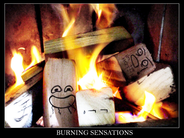 Funny Burning Logs