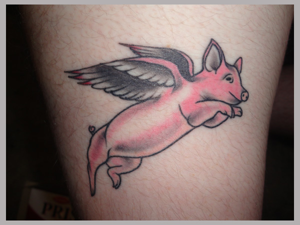 Flying Baby Pig Tattoo