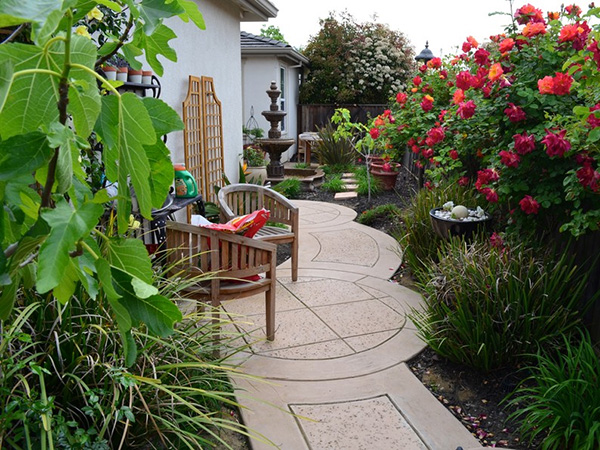 Backyard Circular Pavers Landscaping