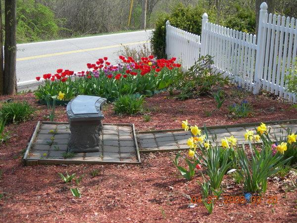 Colorful Backyard Idea
