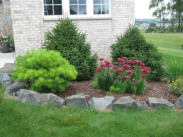 Landscaping Ideas with Rocks