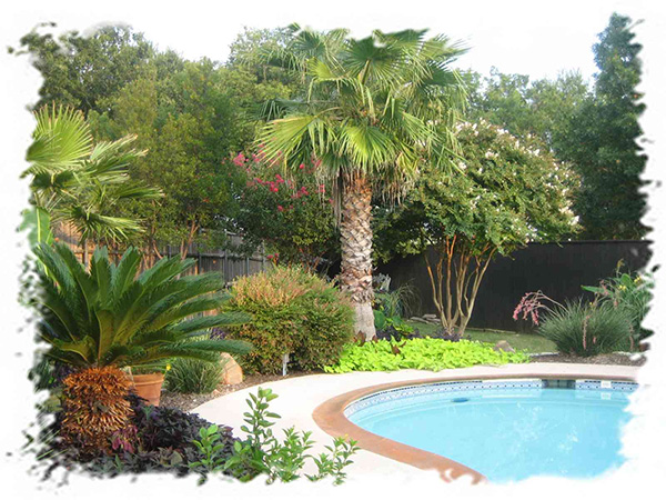 25 Wonderful Tropical Landscaping Ideas - SloDive