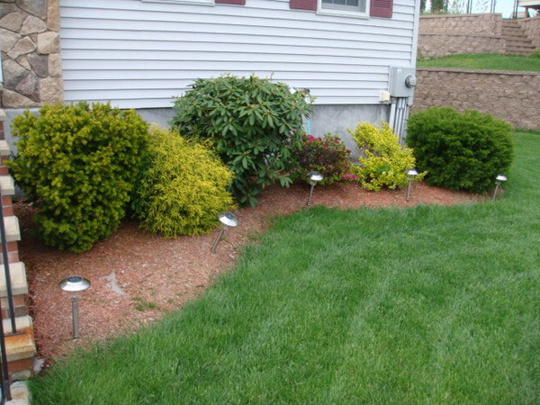 24 Simple Backyard Landscaping Ideas Which Look ... on Simple Backyard Landscaping Ideas id=67961