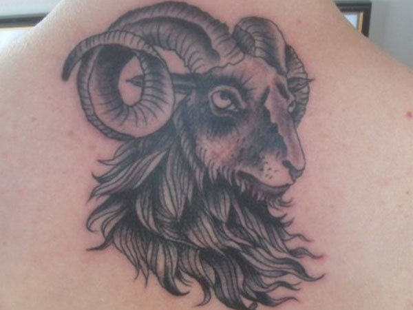 Adorable Aries Tattoo