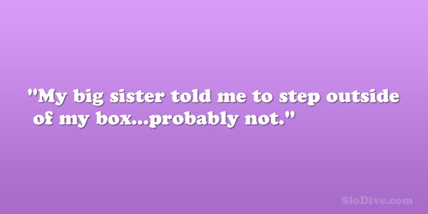 my box 28 Phenomenal Big Sister Quotes