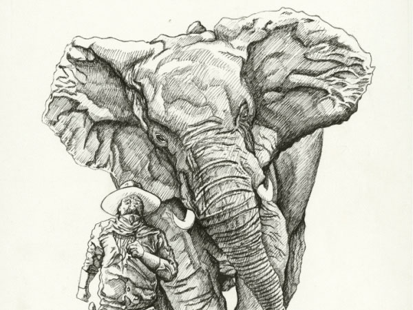 elephant Check Out The 28 Cool Drawing Ideas For Unleashing The Creativity In You
