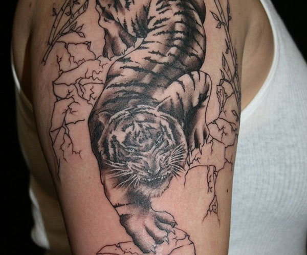 Sleeve Tiger Tattoo