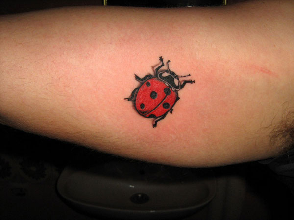 sleevetat 32 Exotic Ladybug Tattoos