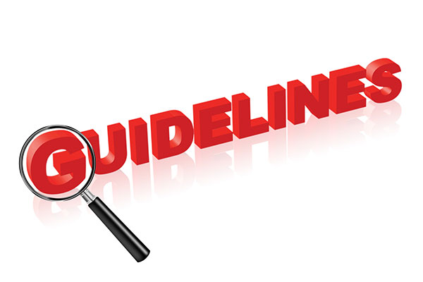 guidelines Web Designing And SEO