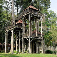 26 Amazing Tree Houses Which Are Memorable