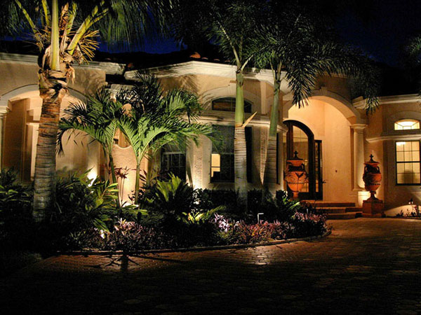 Palm Tree Tropical Front Yard Landscaping Ideas Garden Landscape Design And 25 Lovely Outdoor