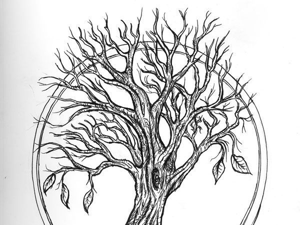 Tree Tattoo Display
