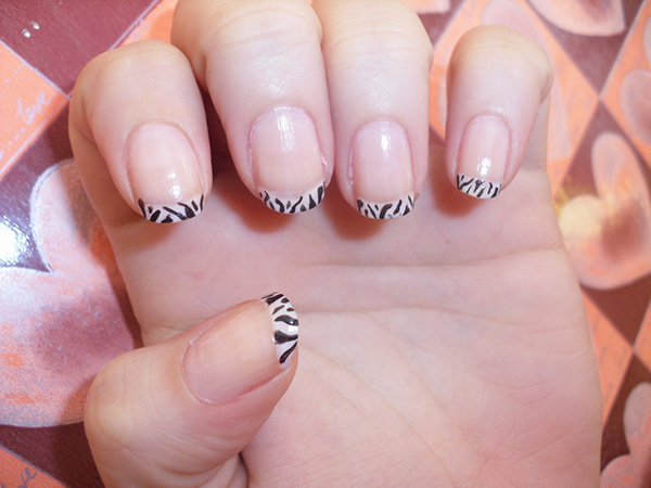 Zebra On Nail Tip