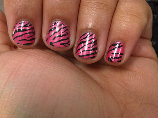 Usual Zebra Design