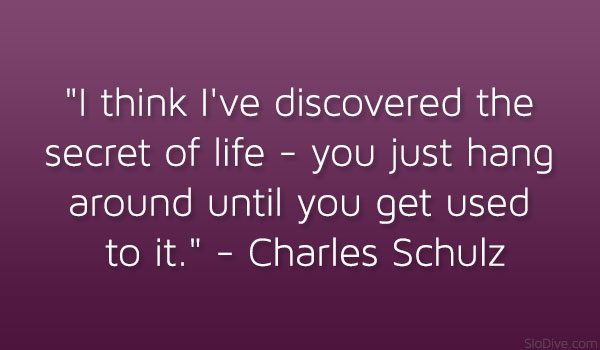 Charles Schulz Quote