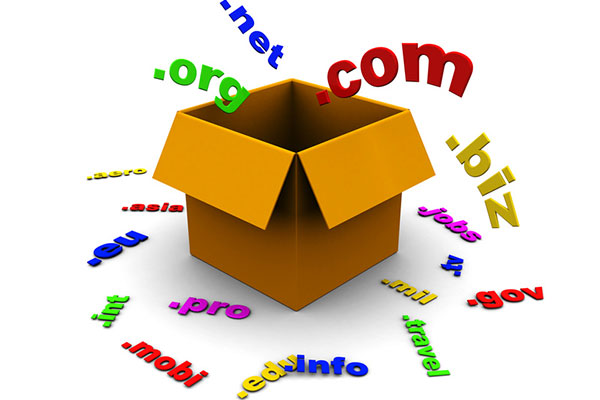 Purchase a Domain Name