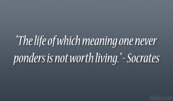 Meaning Of Life Quotes | 24 Wickedly Witty Quotes About Life