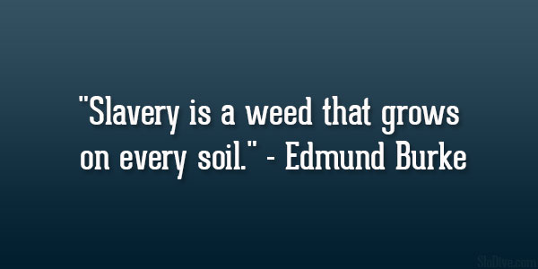 Every Soil