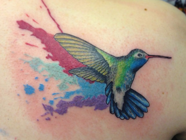 Colorful Splashes Hummingbird