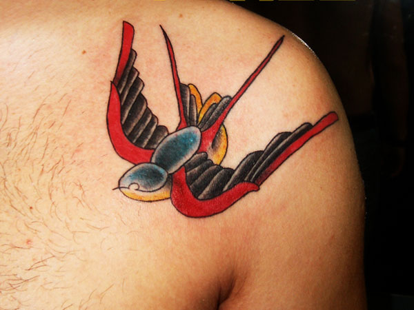 Swallow Neat Design