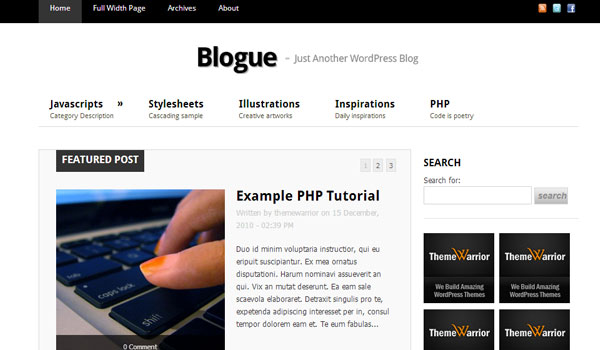 blogue 41 Best WordPress Themes