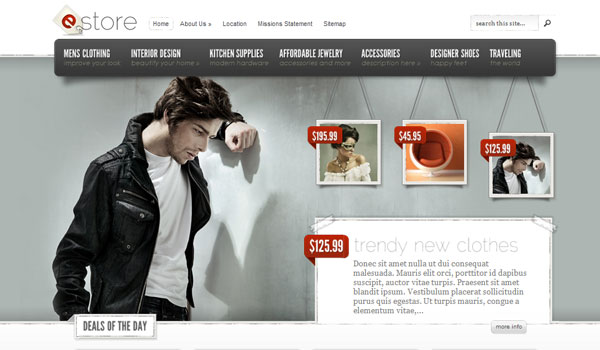 estore 41 Best WordPress Themes