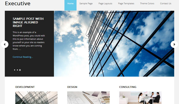 executive 41 Best WordPress Themes