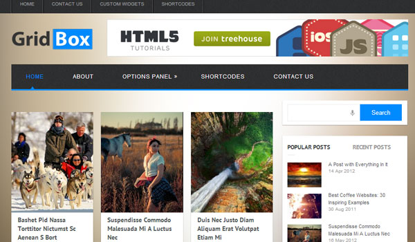 gridbox 41 Best WordPress Themes