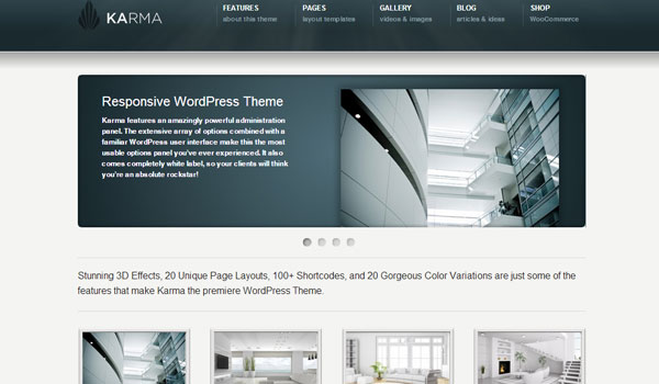 karma 41 Best WordPress Themes