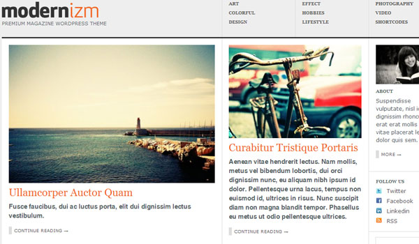 modernizm 41 Best WordPress Themes