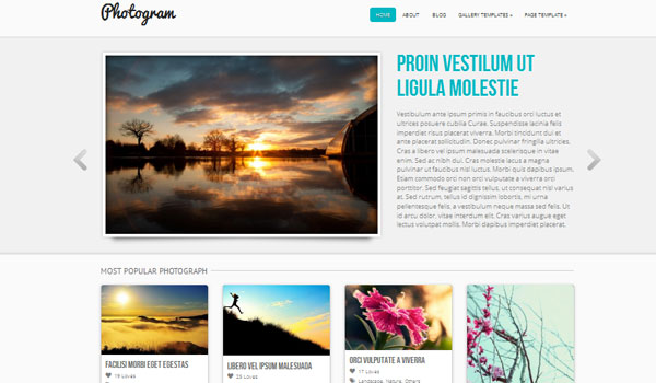 photogram 41 Best WordPress Themes
