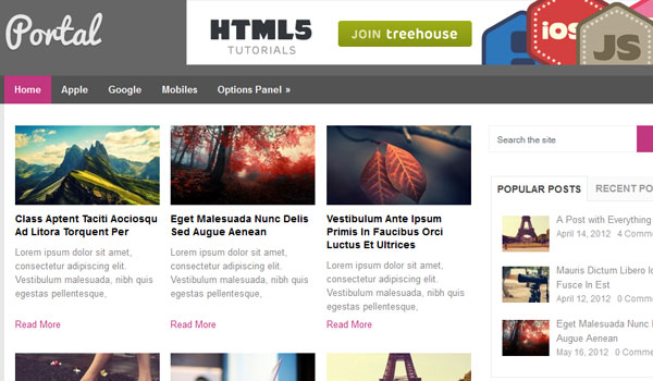portal 41 Best WordPress Themes