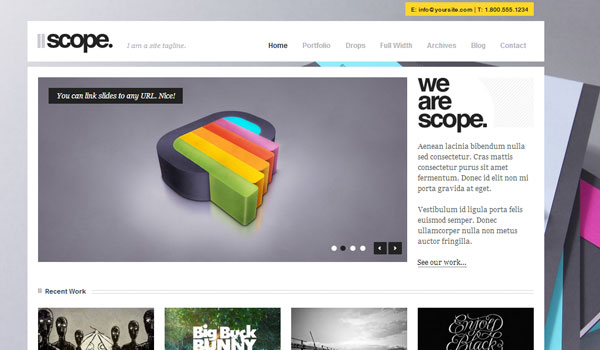 scope 41 Best WordPress Themes