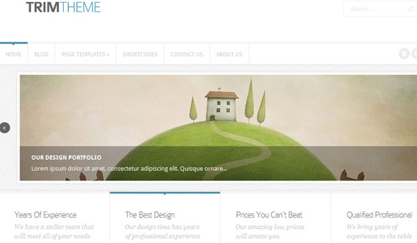 trim 41 Best WordPress Themes