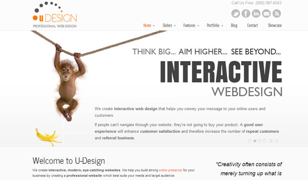 u design 41 Best WordPress Themes