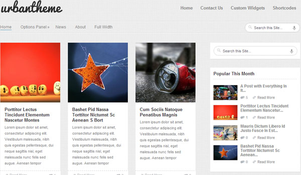 urban 41 Best WordPress Themes