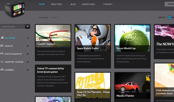 videogrid 41 Best WordPress Themes