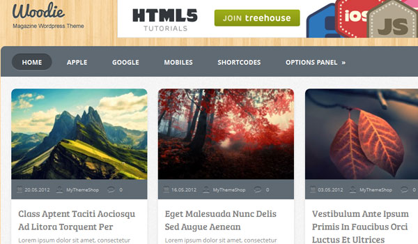 woodie 41 Best WordPress Themes