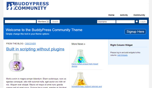 BuddyPress Community Theme