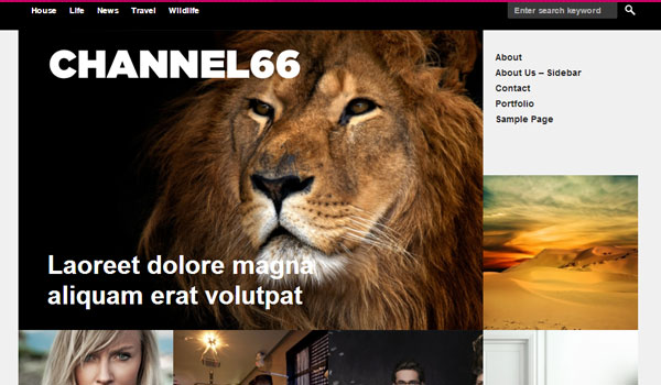 Channel66