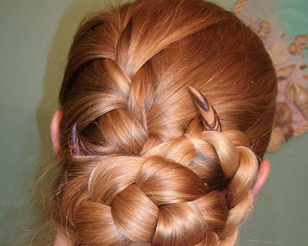 Braided Updo Style