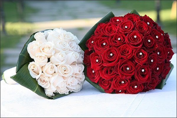Pictures of Roses for Bouquets