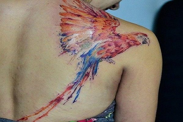 Watercolor Macaw Shoulder Tattoo