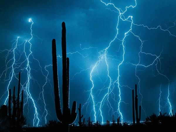 Lightning and Cactus
