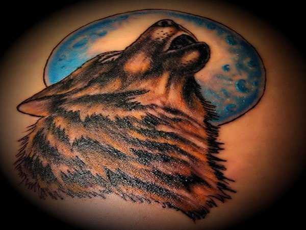 Brown Wolf Howling with Blue Moon