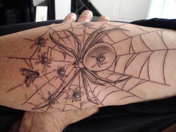 Spider Web Outline Tattoo with Spider and Baby Spiders